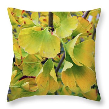 Ginkgo Gold Throw Pillow by Pamela Patch