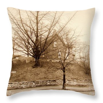 Ginkgo Tree, 1925 Throw Pillow by Cole Thompson