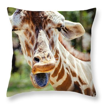Throw Pillow featuring the photograph Giraffe by Andrea Anderegg
