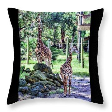 Giraffe Art I Throw Pillow