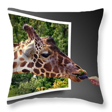Giraffe Feeding Out Of Frame Throw Pillow