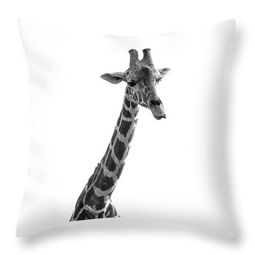 Throw Pillow featuring the photograph Giraffe In Black And White 3 by James Sage