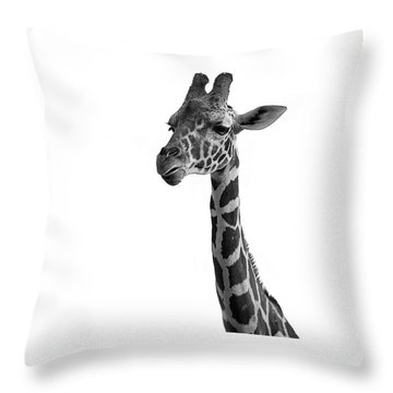 Throw Pillow featuring the photograph Giraffe In Black And White by James Sage