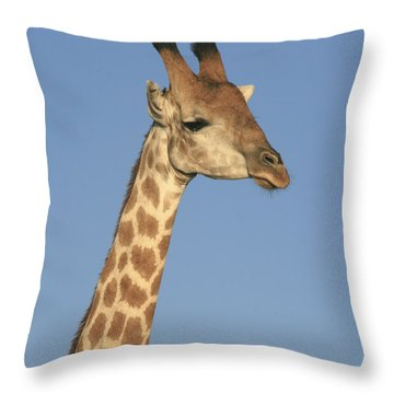 Throw Pillow featuring the photograph Giraffe Portrait by Karen Zuk Rosenblatt