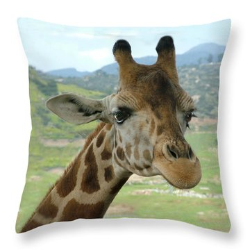 Giraffe Portrait Throw Pillow