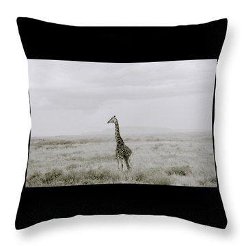 Giraffe Throw Pillow by Shaun Higson