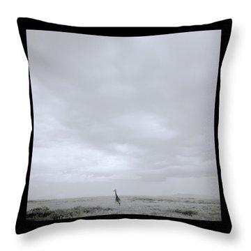 Giraffe Under Big Sky Throw Pillow by Shaun Higson