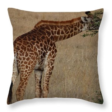 Giraffes Eating - Side View Throw Pillow