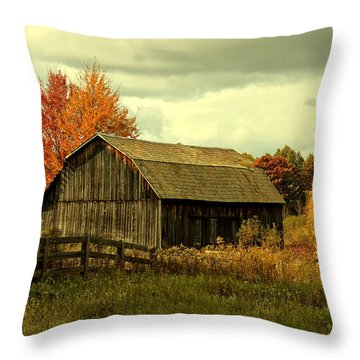 Fall Has Always Been My Favorite Season. Throw Pillow