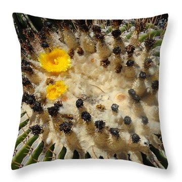 Giving Birth Barrel Cactus Yellow Flowers Throw Pillow