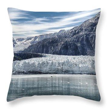 Glacier Bay Alaska Throw Pillow by Gary Warnimont