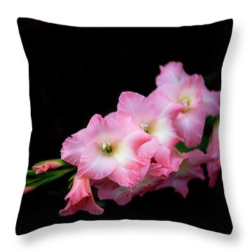 Glad Rags 2 Throw Pillow