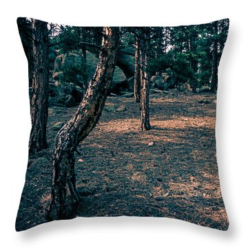 Glade In The Forest Of Colorado Throw Pillow