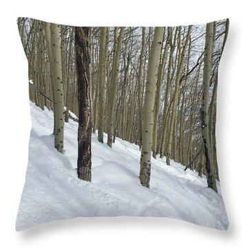 Gladed Run Throw Pillow