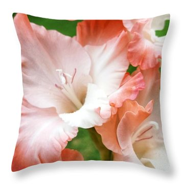 Gladiolus Ruffles  Throw Pillow by Rachel Hannah