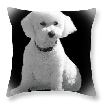 Glamorous Coco Throw Pillow by Emmy Marie Vickers