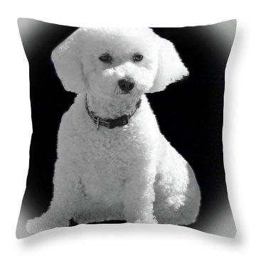 Glamorous Coco Throw Pillow