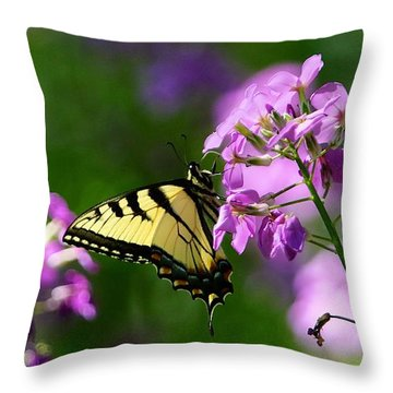 Throw Pillow featuring the photograph Glamour by Robert Pearson