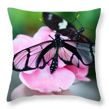 Throw Pillow featuring the photograph Glass Wing Butterfly by Cathy Donohoue