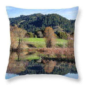 Glassy Mountain Reflections Throw Pillow