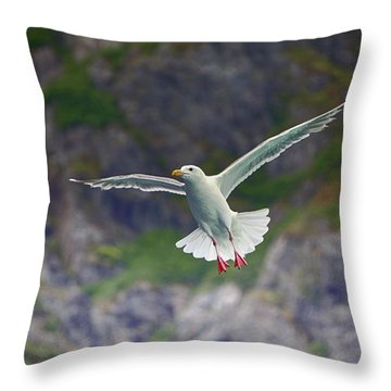 Glaucous-winged Gull Throw Pillow