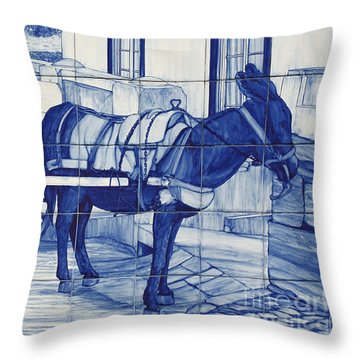 Glazed Tiles Throw Pillow by Gaspar Avila