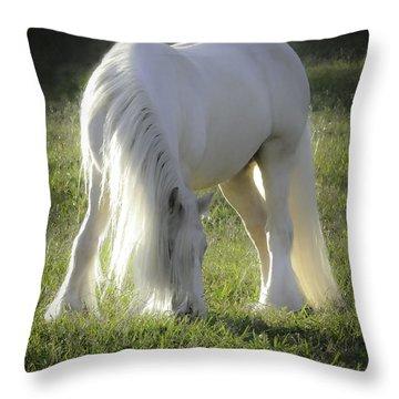 Gleam Throw Pillow