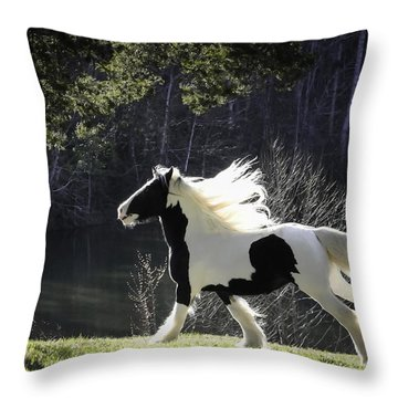 Gleaming Throw Pillow