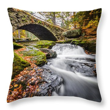 Throw Pillow featuring the photograph Gleason Falls by Robert Clifford