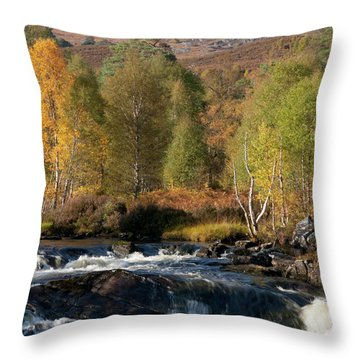 Throw Pillow featuring the photograph Glen Affric In Autumn by Karen Van Der Zijden