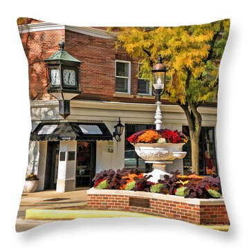 Glen Ellyn Watering Fountain Throw Pillow by Christopher Arndt