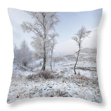 Throw Pillow featuring the photograph Glen Shiel Misty Winter Trees by Grant Glendinning