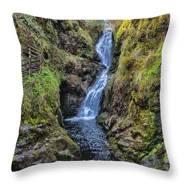 Glenariff Throw Pillow