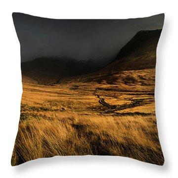 Glenbrittle Autumn Landscape, Isle Of Skye Throw Pillow