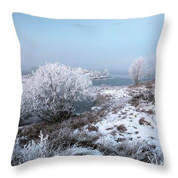 Throw Pillow featuring the photograph Rannoch Moor Winter Mist by Grant Glendinning
