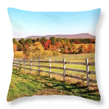 Glendale Road View In The Fall Throw Pillow