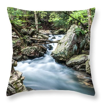Glenn Stream 8607 Throw Pillow