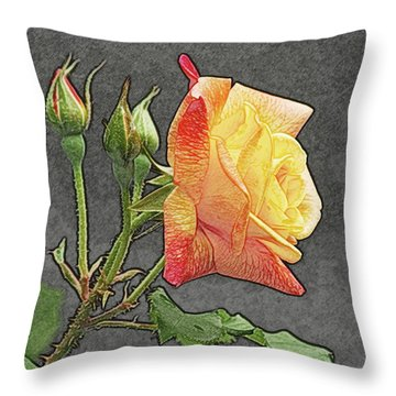 Glenn's Rose 2 Throw Pillow by Michael Peychich