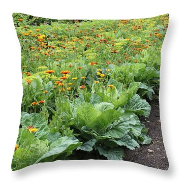 Glenveagh Castle Gardens 4276 Throw Pillow