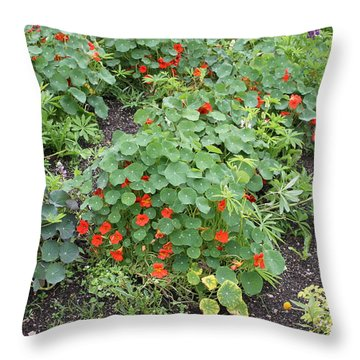 Glenveagh Castle Gardens 4278 Throw Pillow