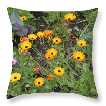 Glenveagh Castle Gardens 4279 Throw Pillow