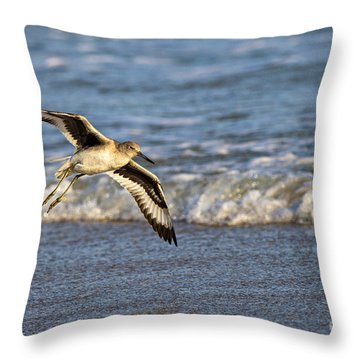 Glide Throw Pillow