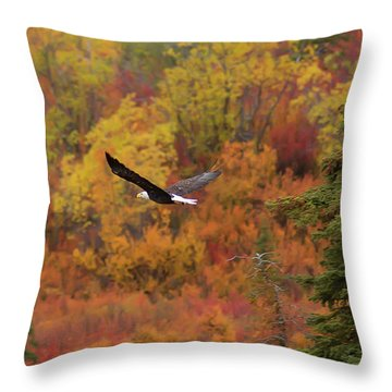 Glide Path Throw Pillow by Ed Boudreau