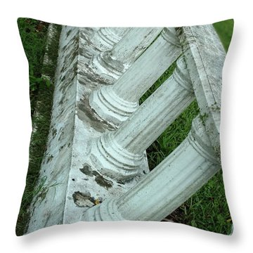 Throw Pillow featuring the photograph Glide Path by Steve Sperry