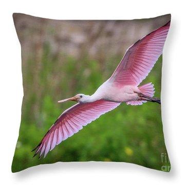 Gliding Spoonbill Throw Pillow
