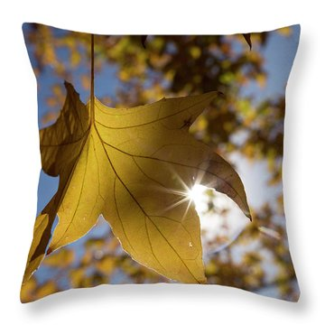 Glimmers Of Autumn Throw Pillow by Sue Cullumber