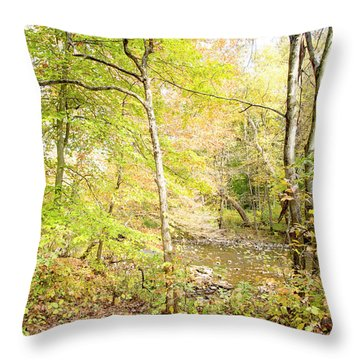 Glimpse Of A Stream In Autumn Throw Pillow