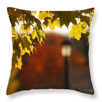 Throw Pillow featuring the photograph Glimpse Of Autumn by Aimelle