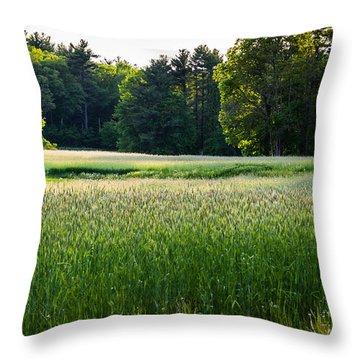 Glistening Green Throw Pillow
