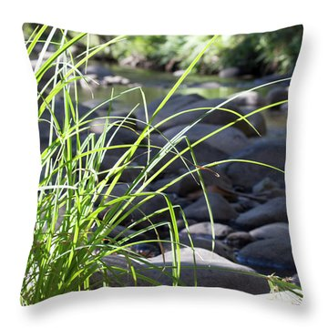 Throw Pillow featuring the photograph Glistening In The Sunlight by Linda Lees